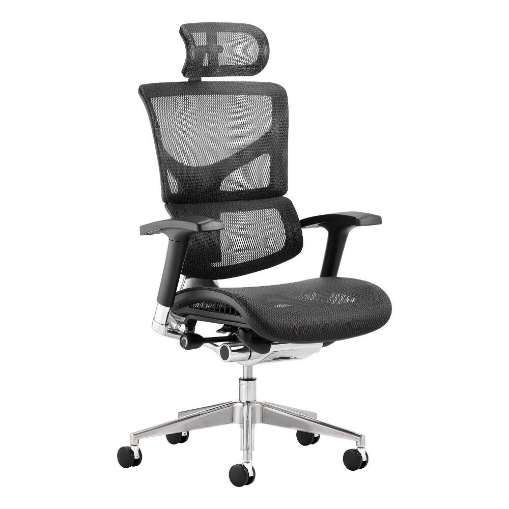 Ergo-Dynamic Posture Chair Black Mesh Ergonomically Designed Controls Multi Use Arms Headrest